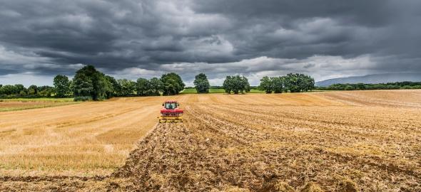 Agriculture Genève, paysage d'été