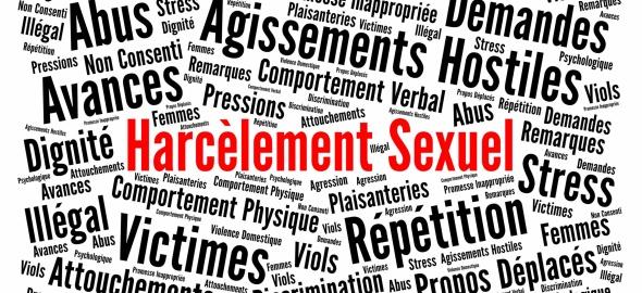 l'ensemble des mots qui concernent le harcèlement sexuel