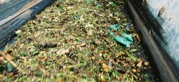 tapis déchets organiques