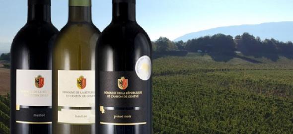 Les nouveautés 2018 en matière de vin