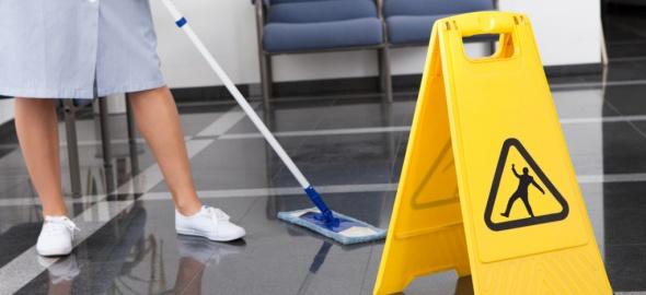 Ménage emploi