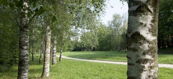Parc des Evaux / Olivier Zimmermann
