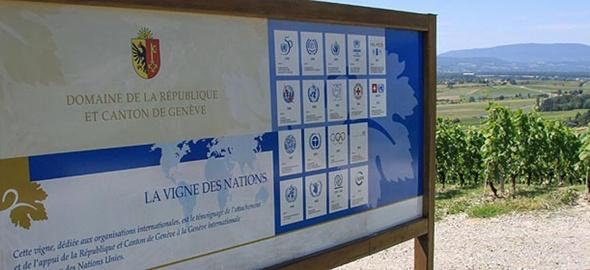 Vigne des nations à Bernex