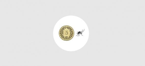 Illustration moustique tigre