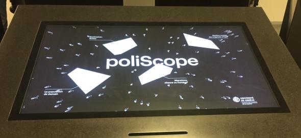 Ecran poliscope