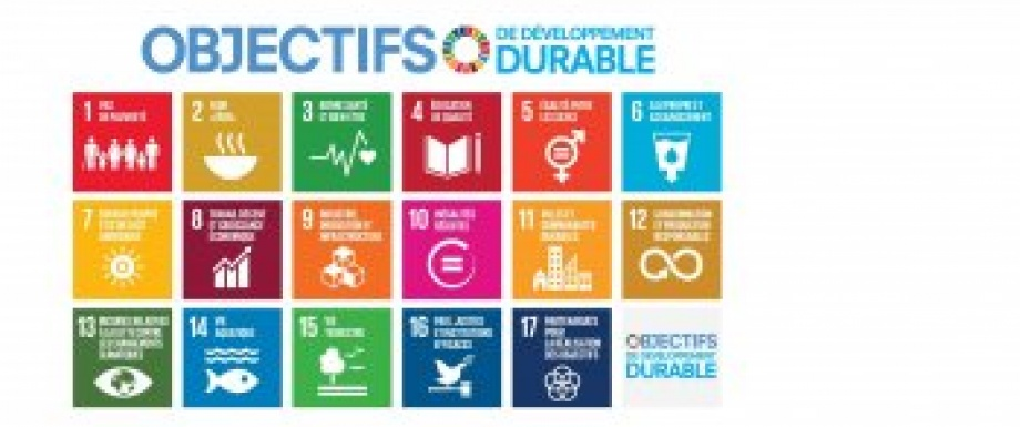 Le développement durable en actions