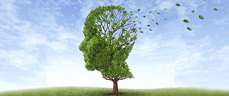 Plan Alzheimer du canton de Genève 2016-2019
