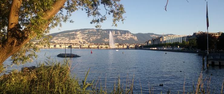 L'alerte canicule est déclenchée à Genève