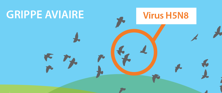 Grippe aviaire: information importante du vétérinaire cantonal - point de situation du 17 mars 2017